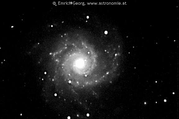 NGC-628 © image-owner(s)