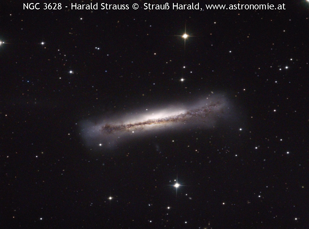 NGC-NGC 3628 - Harald St © image-owner(s)