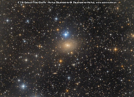 IC IC 356, Hits: 539 © image-owner (scaled: 450x325)