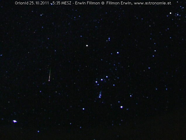 Orionid 25.11.2011, Hits: 2370 © image-owner (scaled: 636x480)