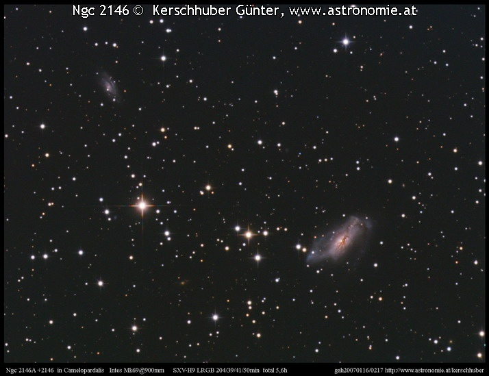 -Ngc 2146 © image-owner(s)