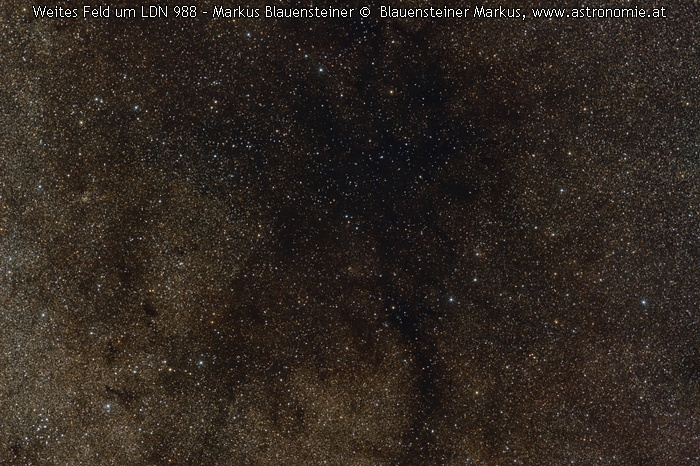 LDN-LDN 988 widefield © image-owner(s)